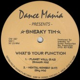 sneaky-tim-whats-your-function-dance-mania-cover
