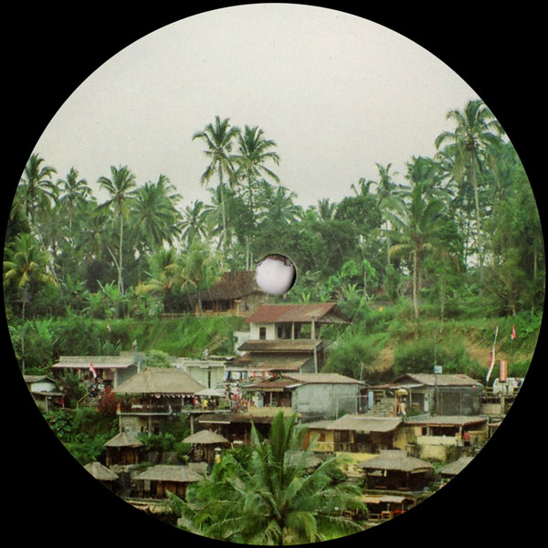 raw-mt-trip-to-the-far-east-distant-hawaii-cover