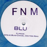 fnm-blu-steve-bug-daniel-dexter-remix-save-the-black-beauty-cover