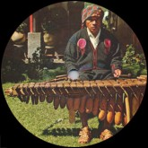 Steve Reich Hnny Nagoya Marimba Hnny Remix No Rights