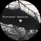 philippe-petit-invasion-ep-knotweed-records-cover