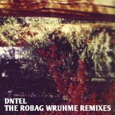 dntel-the-robag-wruhme-remixes-pampa-records-cover