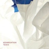 wishmountain-tesco-cd-accidental-cover
