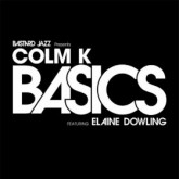 colm-k-basics-part-time-heroes-patchwork-remix-bastard-jazz-cover
