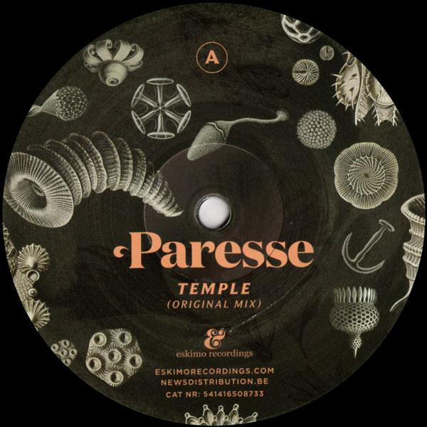 paresse-temple-simple-symmetry-remix-eskimo-recordings-cover