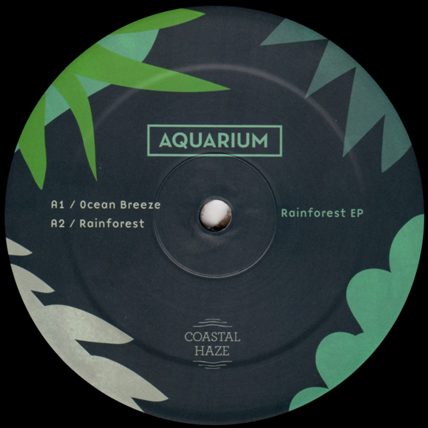 aquarium-rainforest-ep-coastal-haze-cover