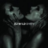 dj-wild-dirty-cd-cabin-fever-cover