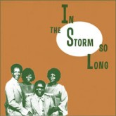 various-artists-in-the-storm-so-long-lp-mississippi-cover