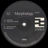 morphology-lagrangian-acidlab-cover