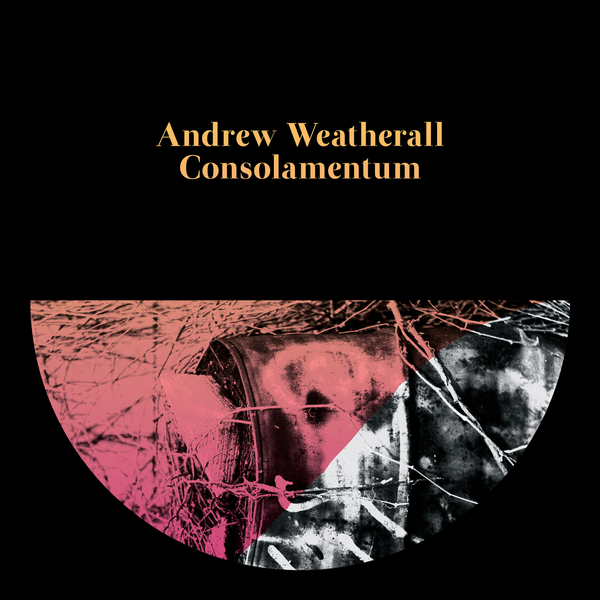 andrew-weatherall-consolamentum-lp-rotters-golf-club-cover