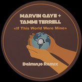 marvin-gaye-tammi-terrell-if-this-world-were-mine-dalmnjo-remix-white-label-cover