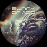 bunny-on-acid-are-you-a-rainbow-ep-feat-amp-fiddler-studio-rockers-cover
