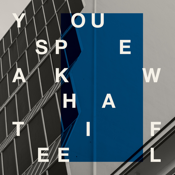 you-speak-what-i-feel-dj-sprinkles-snd-my-good-friends-tell-me-that-boomkat-editions-cover