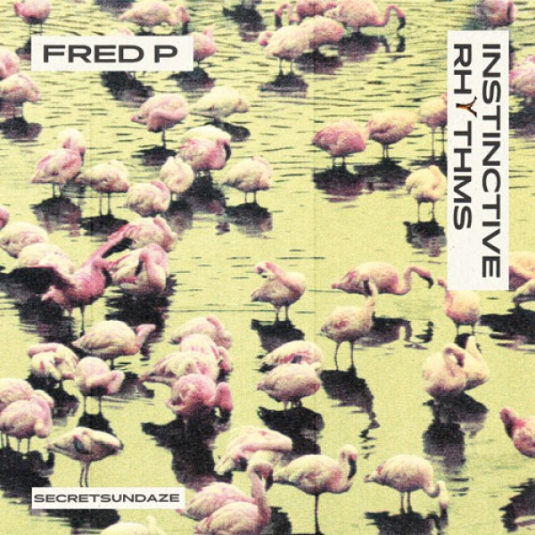 fred-p-instinctive-rhythms-secretsundaze-cover